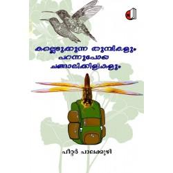 Kalledukkunna Thumbikalum Parannupoya Changalikkilikalum